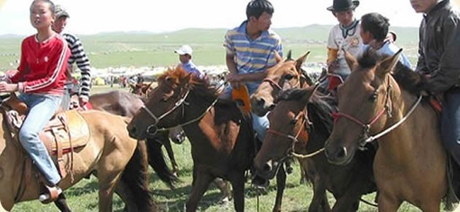 Horse Riding Adventure in Royal Trekking