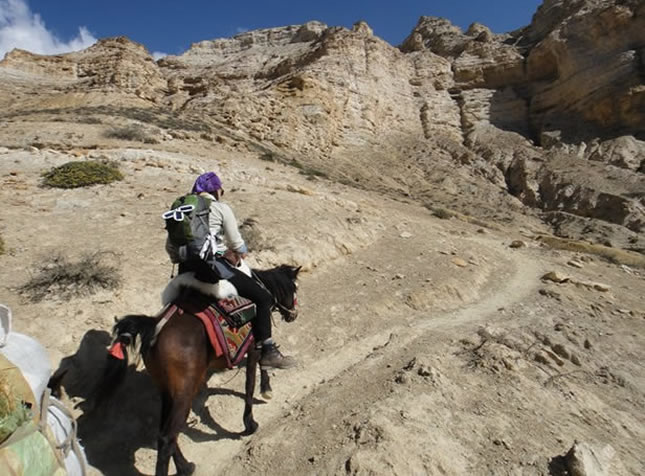 Picture of horse riding in Nepal